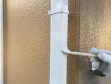 竪樋塗装 上塗り2回目 シリコン 横浜市 戸建て
