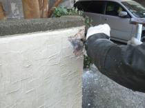 横浜市港南区T様邸塀塗装前ケレン作業