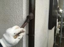 横浜市 港南区 上塗り1回目 竪樋 塗り替え 日本ペイント