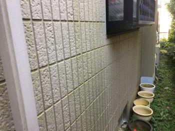 施工前 外壁塗装 藻 カビ 腐食 横浜市 瀬谷区