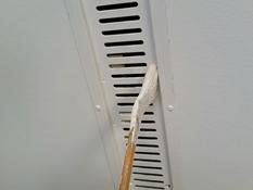 軒天 換気口 塗装 耐候性 人気 ファインシリコンフレッシュ