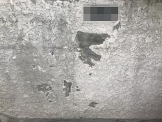 塀塗装補修工事 施工前