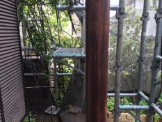 ベランダ柱 塗り替え 施工前