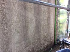 施工前 塀 塗り替え